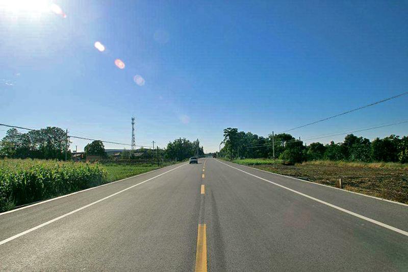 志丹至南梁二级公路改建工程绿化工程LH-1标段